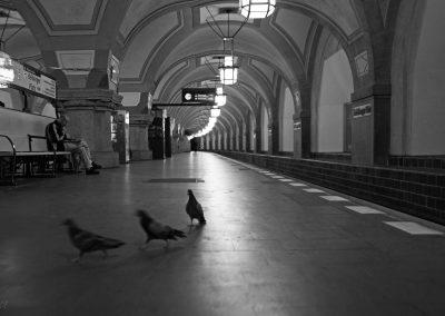 Tauben in UBahn Station